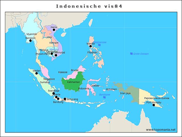 indonesische-vis84